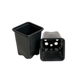 Square Pot (Black) (7x7x8cm) (230ml)