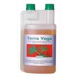 canna-terra-vega